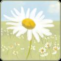 Daisypath icon