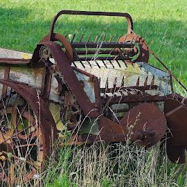 Farm Wagon by Dan Ferrin - Transportation Other ( farm, wagon, farm wagon, transportation, antique )