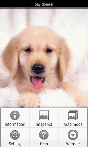 【免費書籍App】ipiks Love dogs 2 -Big Puppy--APP點子