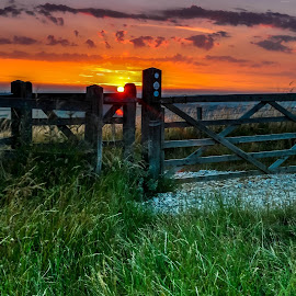 Gate & sunset by Béla Pászti - Landscapes Sunsets & Sunrises ( west sussex, hill, england, chichester, relax, sunset, goodwood, gate )