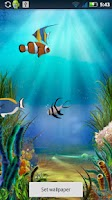 Screenshot of Fish Pond Live Wallpaper