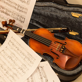 violin by Budi Santoso - Artistic Objects Musical Instruments