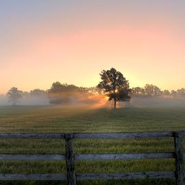 Sunrise in Niagara by Ken Chambers - Landscapes Sunsets & Sunrises ( hdr, canada, farmland, landscape, sun, photography, farm, field, sky, nature, fog, niagara, sunrise )