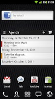 Screenshot of APW Widgets