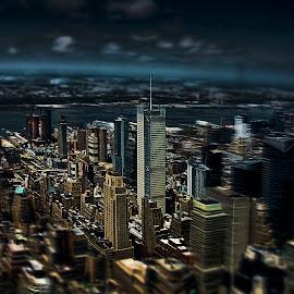 Pocket Sized Manhattan by Laura Prieto - City,  Street & Park  Skylines ( skyscrapers, manhattan, new york, ny, tilt shift, hudson river,  )