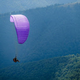 by Ivan Borys - Sports & Fitness Other Sports ( mountain, fly, sunny, summer, parachute )