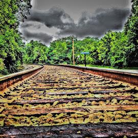 by Chris Martin - Transportation Railway Tracks (  )