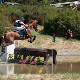 Jumping Cross-Country by Denise Johnson - Animals Horses ( equine, horses, jumping cross-country, horse, equines,  )