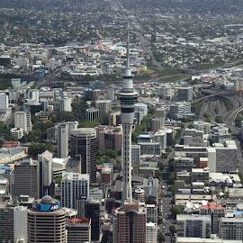 Auckland CBD by Edward Swift - City,  Street & Park  Skylines