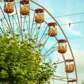 Geneva Ferris Wheel by Jennette Marty - City,  Street & Park  Street Scenes
