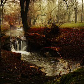 Stairs by Dan Tiganila - Landscapes Waterscapes ( park, autumn, waterscape, romania, mist )