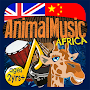 Animal Music English & Chinese