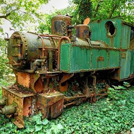 Little old train.. Ćiro <3 by Željko Salai - Transportation Trains
