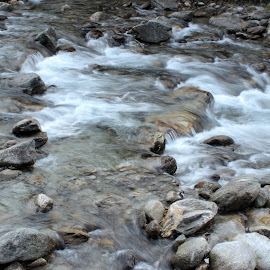 Creek by Gianni Frasca - Nature Up Close Water ( water, nature, creek, stones, alps )