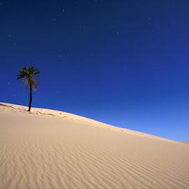 i Love Desert by ALAGOURI Ibrahim - Landscapes Deserts ( canon, libya, benghazi, alagouri, eos, desert, 70d, star, تص, العق, ير, deserts )