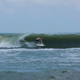 Merb  by Elana Skrobot - Sports & Fitness Surfing ( surfbard, water, surfing, florida, beach, boy,  )
