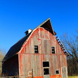 Red Barn by Melissa Harris - Buildings & Architecture Other Exteriors ( farm, redbarn, barn, bluesky, arkansas )