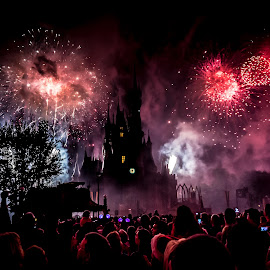 by J Kelley - News & Events Entertainment ( christmas, fireworks, castle, disney,  )