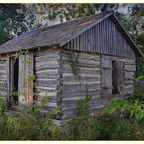 ----------The Old Cabin---------- by Neal Hatcher - Buildings & Architecture Decaying & Abandoned