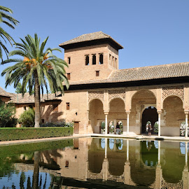 Alhambra by Dhanika Ranasinghe - Buildings & Architecture Public & Historical ( alhambra, architecture, granada, historic, spain )