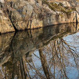 Wide Water I by Gary Stanley - Landscapes Forests ( chesapeake and ohio canal national historic park, d800e, water reflection, maryland, c&o canal, bethesda )
