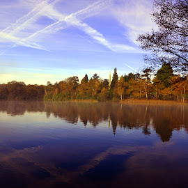 Criss Cross Reflections by DTphotography Nikon Lumix - Landscapes Waterscapes
