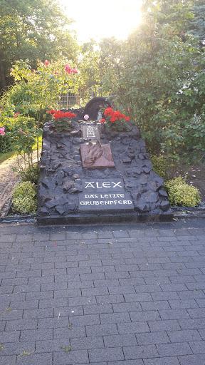 Alex Das Letzte Grubenpferd