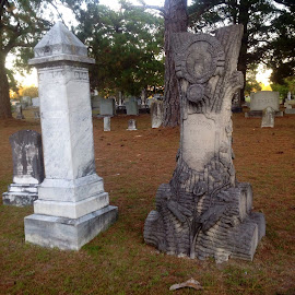Old Handcarved Woodman of the World  by Terry Linton - City,  Street & Park  Cemeteries (  )