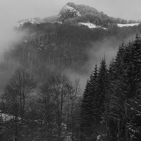 Descending by Iulia Breuer - Black & White Landscapes ( mountains, winter, fog, woman, horse,  )
