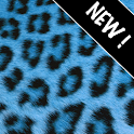 GO Contacts Blue Cheetah icon