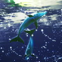 Dolphin RYUKYU Techno icon