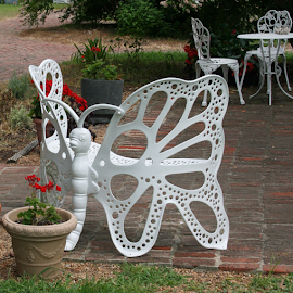 Butterfly Bench by Karen Harrison - Artistic Objects Furniture ( farm, chippokes, butterfly, bench, white, patio, furniture, plantation )
