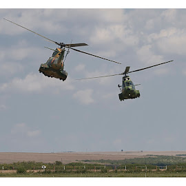 by Leo Coste - Transportation Helicopters (  )