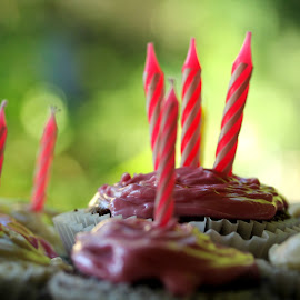 Birthday Party!  by Bob Ward - Food & Drink Candy & Dessert