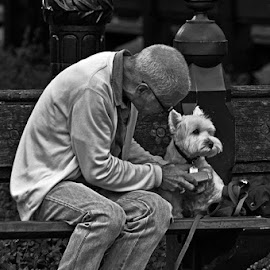 by Jil Norberto - People Street & Candids ( love, black and white, central park, dog, man,  )