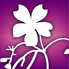 Audubon Wildflowers icon