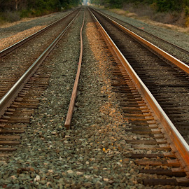 Walk the line by Michael Wolfe - Transportation Railway Tracks ( train tracks, railroad tracks, csx, railroad, conrail,  )