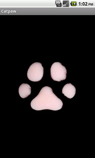 猫の足跡 響