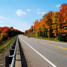 Fall Ride by Mike Moore - Transportation Motorcycles ( nature, fall colors, color, fall ride, fall )