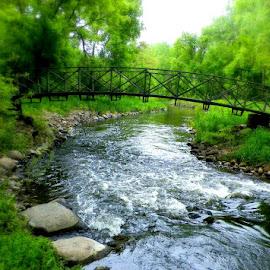 Peacefull Travelling by Jennifer Schmidt - Landscapes Waterscapes ( brook, waterscape, creek, bridges, basset creek,  )