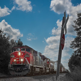 Moving America near Goodells, MI by Mike Boening - Transportation Trains ( clouds, olympus omd em1, goodells, sunny, train, olivia, laura, grad party, andy, graduation, land, device, transportation )