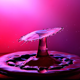 I am red by Nirmal Kumar - Abstract Water Drops & Splashes