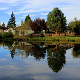 Perfect Reflection by Mina Thompson - Landscapes Waterscapes ( oregon, houses, reflection, nature, pond )