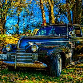 Big Black Dodge by Tina Hailey - Transportation Automobiles ( lakeville, car, minnesota, vintage, fall, dodge, tinas capture moments, hot sams,  )