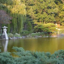 Japanese Garden - Buffalo, NY by Pam Aaron - City,  Street & Park  Historic Districts