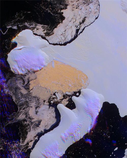 NASA最经典的45张照片 - 池塘边的榕树林 - 镜月博客