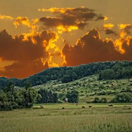 by Kathy Filipovich - Landscapes Prairies, Meadows & Fields