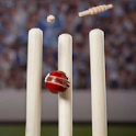 Cricket Game Tones icon