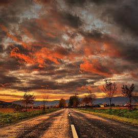 The Journey pt.9. by Zsolt Zsigmond - Transportation Roads ( clouds, sky, sunset, twilight, trees, road )