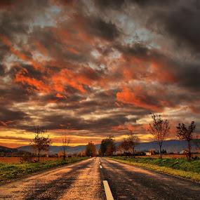 The Journey pt.9. by Zsolt Zsigmond - Transportation Roads ( clouds, sky, sunset, twilight, trees, road,  )